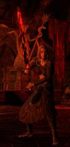 Nord Sorcerer in Oblivion