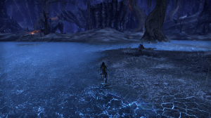 I like how the water lights up the broken ground at the shorelines