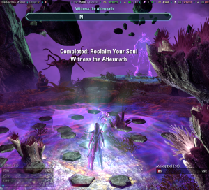 Vestige no more!  And who was overdosing on the 'shrooms when they designed this zone?