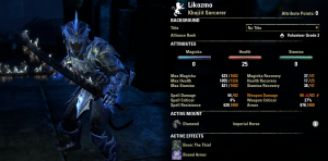 Level 26 Sorcerer Stats with Bound Armor and Surge both running
