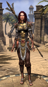 Level 40 gear.  Bosmer's been dark colors up until now, so swapping to a gold color palette surprised me a little.