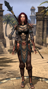 Level 46 gear set is a bit darker again.  I really liked this one.