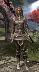 "At level 30 my heavy armor skill was as high as I ""needed"" so I swapped to full light armor and went Altmer style this time.  Love all of it except the hip pieces, but that's just ESO armor for you."