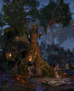 Loved how the Wood Elves had shaped this tree