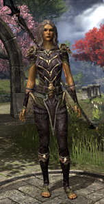 The VR1 Equipment Upgrade -- Daedric Motif staff, and Primal Light Armor.  Other than the open-toed sandals I quite like the look.
