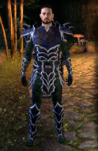 Level 20 Daedric Leather, green quality.  Who thought it was a good idea to majke the leather blue and the cloth underpinnings green?  Gotta find me a costume to cover this up. . . .