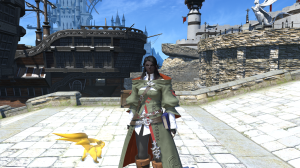 """Level 15 arcanist with my tank pet -- distinguishable from my dps pet since it's """"Topaz"""" instead of """"Turquoise"""""""