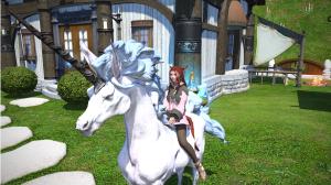 Mi'qote on a unicorn