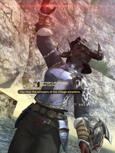 Level 45 Warrior