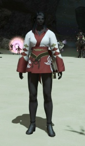 I like this piece.  Might use it for my healer set's glamour ;-)