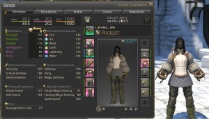 Level 29 Pugilist stats and appearance